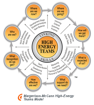 Margerison-Mc Cann High-Energy Teams Model